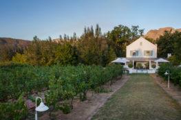 Dunstone-Manor-Swimming-Pool-and-vineyard